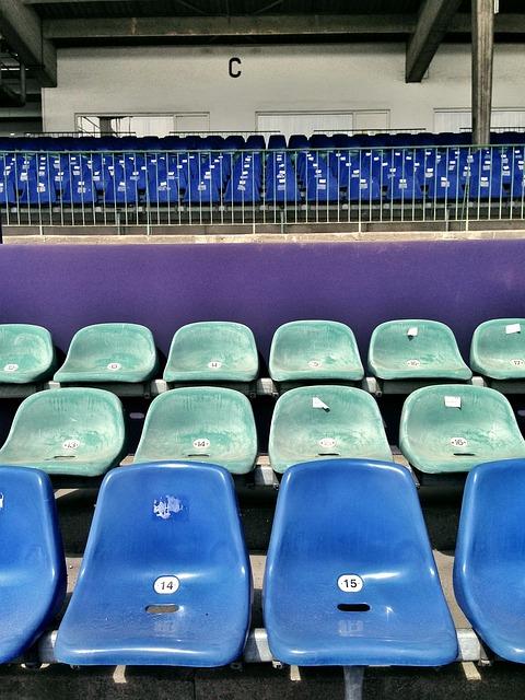 Vigilante de seguridad en eventos deportivos y espacios públicos