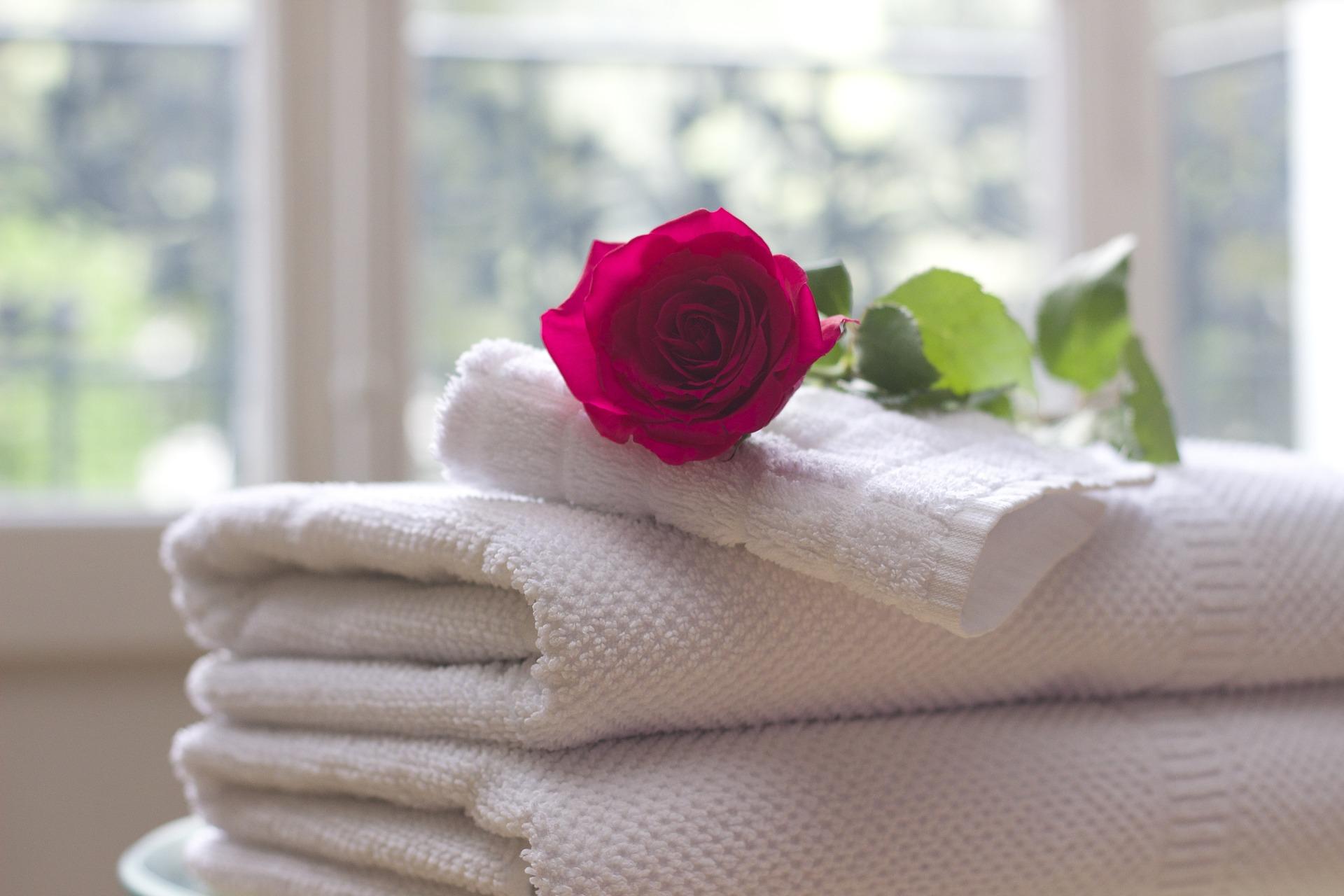 rosa sobre una toalla de hotel